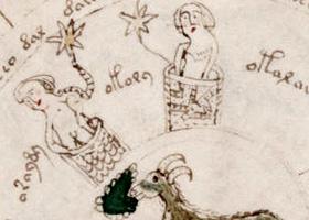 Aperçu de la page 70 du manuscrit de Voynich