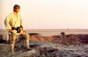 Luc Skywalker scrute-t-il un paysage des Yvelines ?