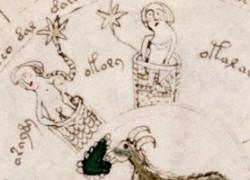 Le manuscrit de Voynich : un livre écrit dans une langue inconnue