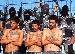 Mara Salvatrucha : un gang d'un demi-million de membres